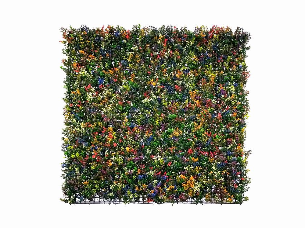 Buxus multi color Kunsthaag