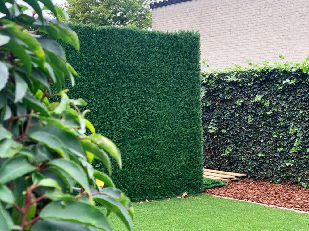 Conifeer japanse ciprus kunsthaag tuin