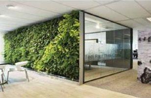 Kunsthaag plantenwand voor binnen toepassing kantoor