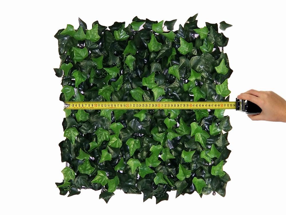Afmetingen 50x50cm mat Kunst Hedera Helix Kunsthaag tegel paneel brandvertragend brandklasse B Kunsthaagvoordeel