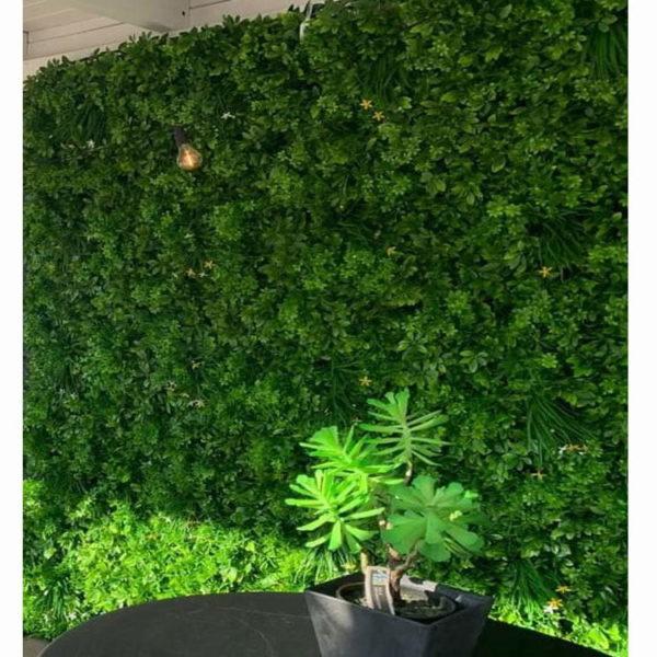 Schefflera kantoor plantenwand