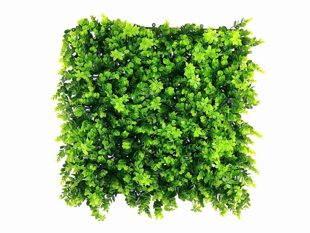 Vegetatie buxus Kunsthaag
