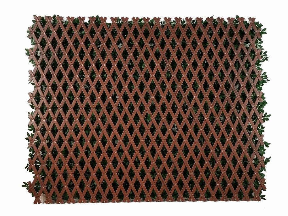 Harmonica kunsthaag Laurier donker