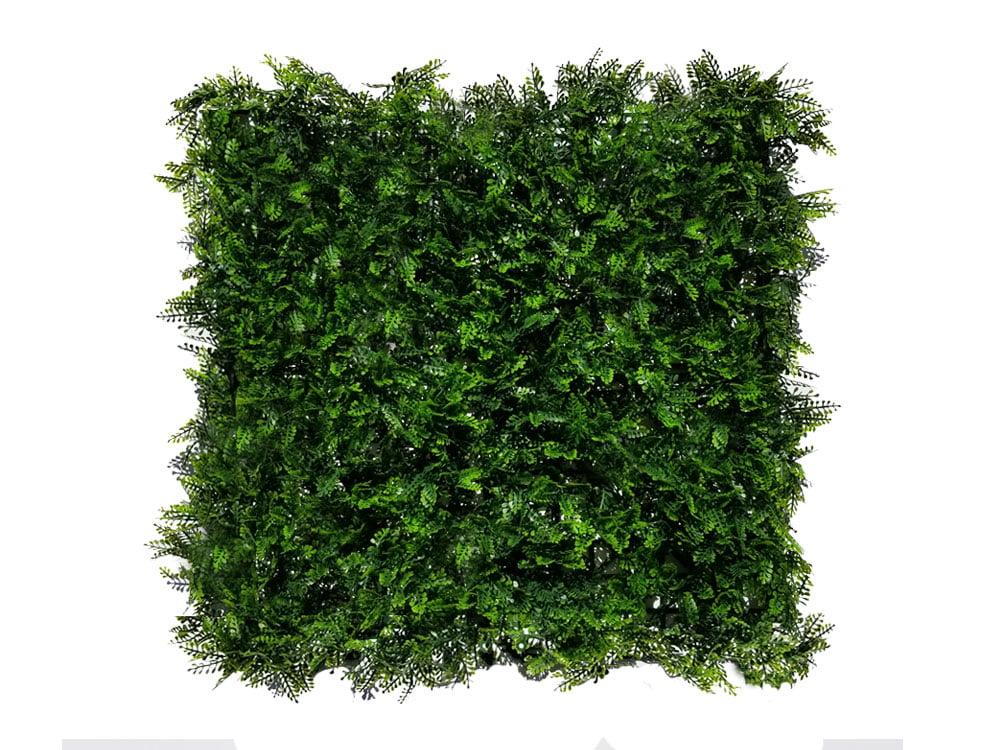 Kunsthaag Asplenium viride darkgreen