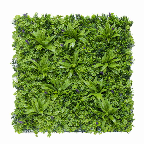 Vegetatie sedum flower Plantenwand