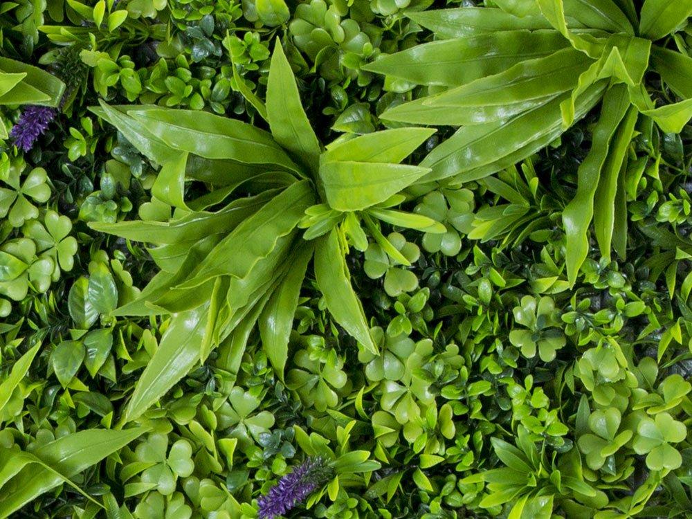Vegetatie sedum flower Plantenwand 100x100cm detail