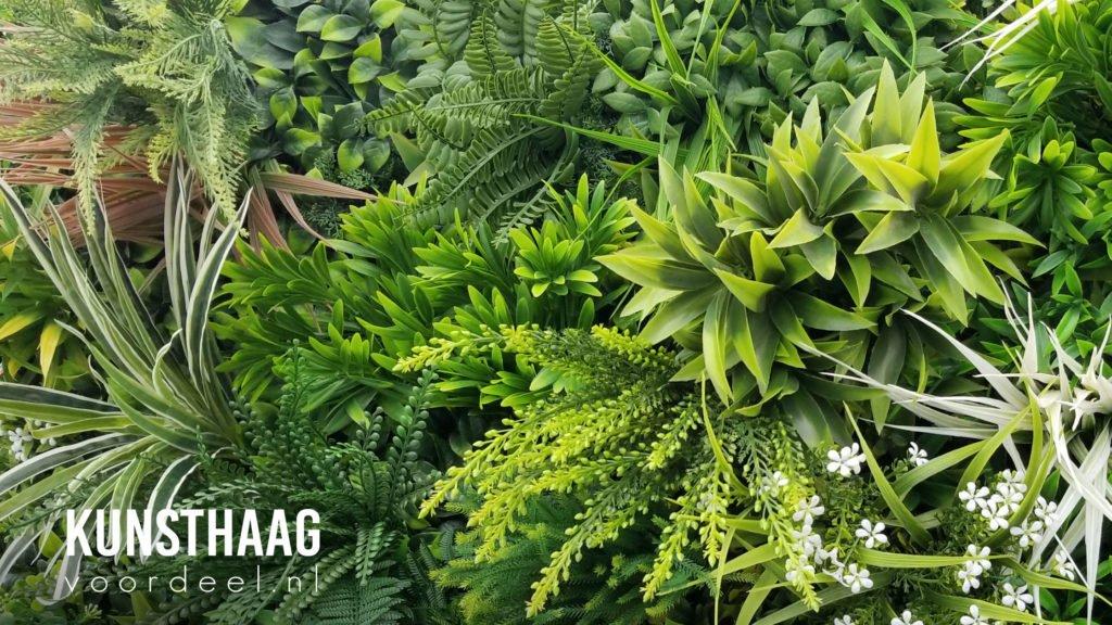 3D plantenwand van kunststof