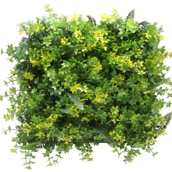 Vegetatie varen lineos kruid