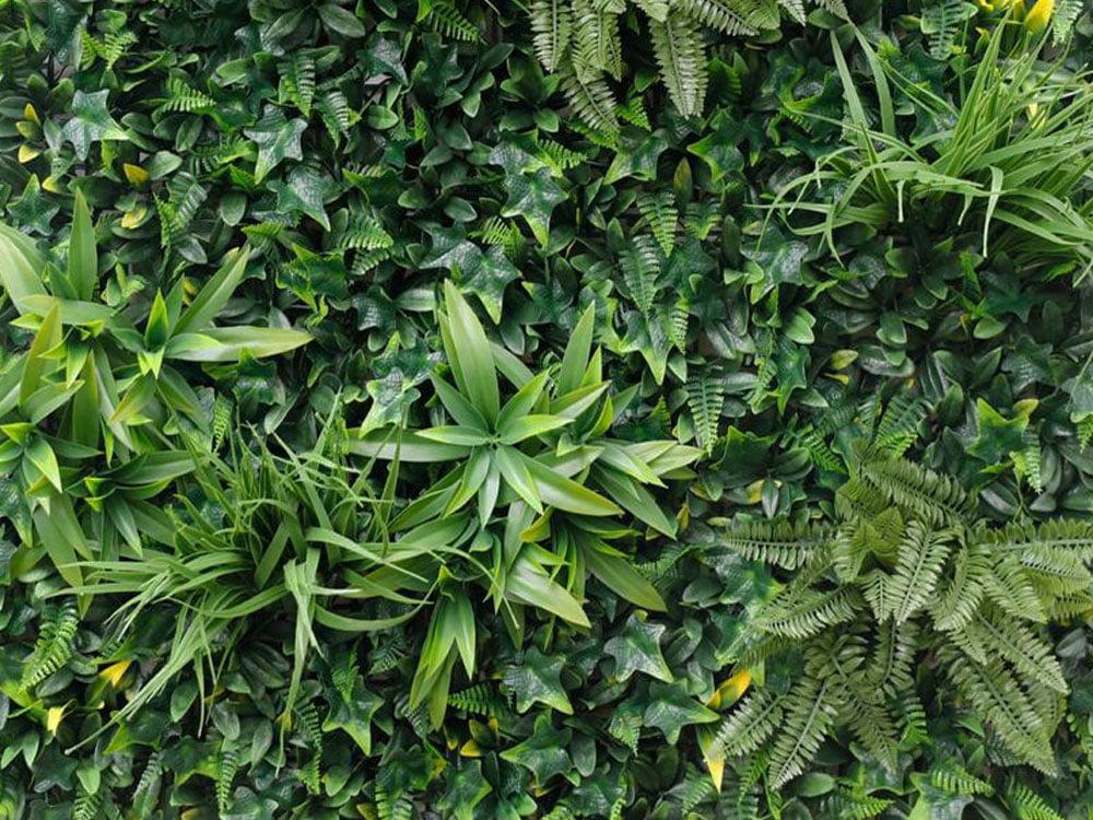 Vegetatie Jungle groen plantenwand detail