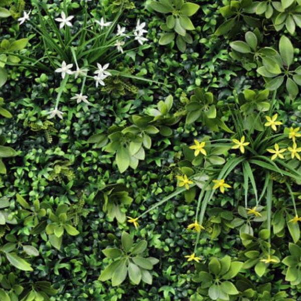 Vegetatie schefflera wildbush Plantenwand detail
